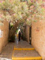 Jaffa, Tel Aviv P1020527