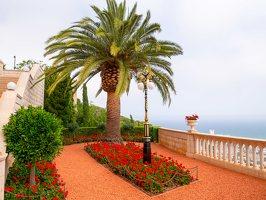 Bahai Gardens in Haifa P1030494