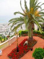 Bahai Gardens in Haifa P1030495