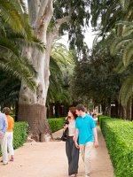 Bahai Gardens in Haifa P1030518