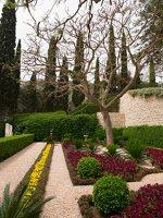 Bahai Gardens in Haifa P1030532