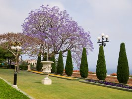Bahai Gardens in Haifa P1030534