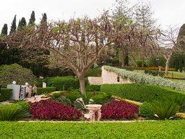 Bahai Gardens in Haifa P1030536