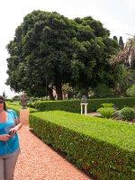 Bahai Gardens in Haifa P1030554