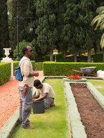Bahai Gardens in Haifa P1030560
