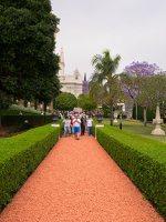 Bahai Gardens in Haifa P1030562