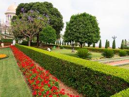 Bahai Gardens in Haifa P1030566