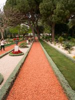 Bahai Gardens in Haifa P1030569