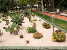 Bahai Gardens in Haifa P1030573