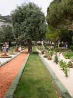 Bahai Gardens in Haifa P1030575
