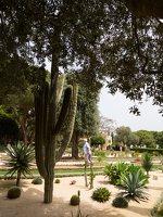 Bahai Gardens in Haifa P1030582