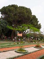 Bahai Gardens in Haifa P1030584