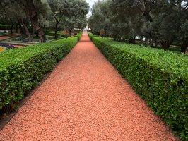 Bahai Gardens in Haifa P1030594