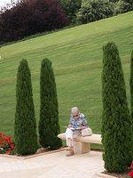 Bahai Gardens in Haifa P1030652