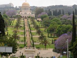 Bahai Gardens in Haifa P1030678