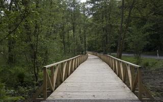 Juodkrantė · dviračių takas, medinis tiltas 4340