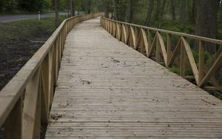 Juodkrantė · dviračių takas, medinis tiltas 4342