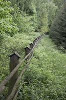 Juodkrantė · medelyno tvora 4343