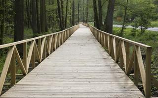 Juodkrantė · dviračių takas, medinis tiltas