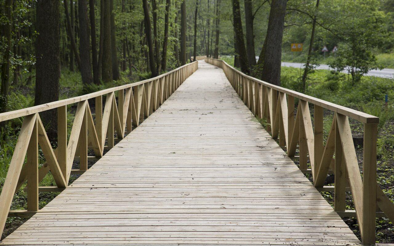 Juodkrantė, dviračių takas, medinis tiltas