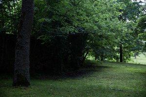 Alantos dvaro parkas 8599