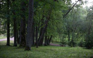 Alantos dvaro parkas 8601