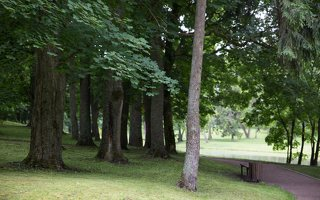 Alantos dvaro parkas 8670