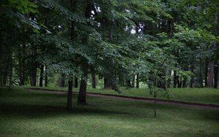 Alantos dvaro parkas 8722