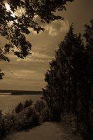 Kadagių slėnis · Nemuno krantas 8432