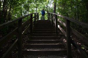 Kadagių slėnis · pažintinis takas, laiptai link Nemuno 8443