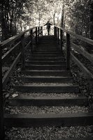 Kadagių slėnis · pažintinis takas, laiptai link Nemuno 8445