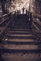 Kadagių slėnis · pažintinis takas, laiptai link Nemuno 8447