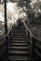 Kadagių slėnis · pažintinis takas, laiptai link Nemuno 8449