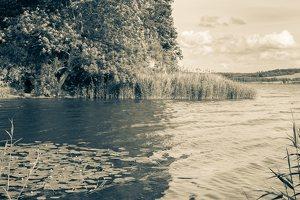 Kadagių slėnis · Nemuno krantas 8465