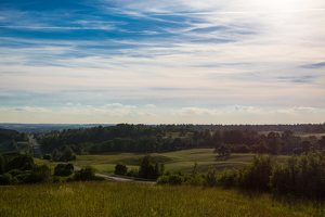 Lepelionių piliakalnis · Napoleono kepurė 8570