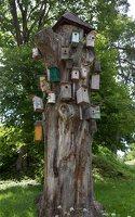 Šventos mitologinis takas · inkilų medis 9133