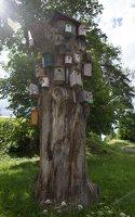 Šventos mitologinis takas · inkilų medis 9134