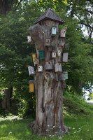 Šventos mitologinis takas · inkilų medis 9135