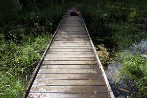 Sirvėtos regioninis parkas · Šventos mitologinis takas 9221