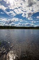 Sirvėtos regioninis parkas · ežeras Ilgys 9245
