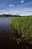 Sirvėtos regioninis parkas · ežeras Ilgys 9251