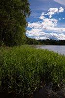 Sirvėtos regioninis parkas · ežeras Ilgys 9255
