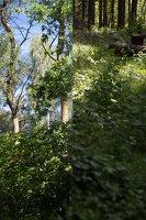 Sirvėtos regioninis parkas 9264