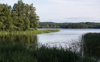 Sirvėtos regioninis parkas · ežeras Kančioginas 9299