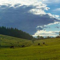 Sirvėtos regioninis parkas 9302