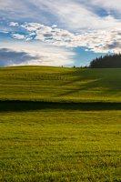 Sirvėtos regioninis parkas 9308