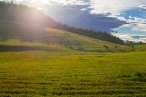 Sirvėtos regioninis parkas 9309
