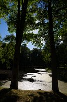 Raudonės pilies parko tvenkinys 9499
