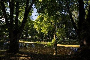 Raudonės pilies parko tvenkinys 9509