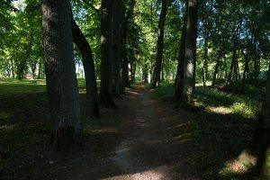 Raudonės pilies parkas · liepų alėja 9522